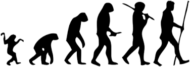 ۵ باور غلط در خصوص نظریهی فرگشت